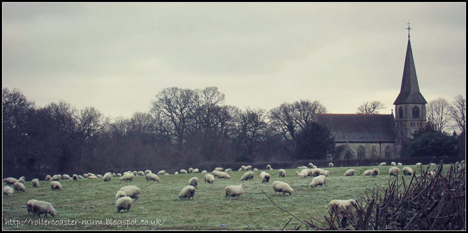 The church and the flock on a frosty morning