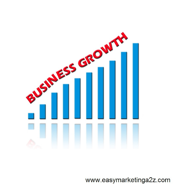 Business Growth 13