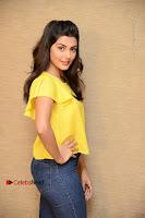 Actress Anisha Ambrose Latest Stills in Denim Jeans at Fashion Designer SO Ladies Tailor Press Meet .COM 0014.jpg