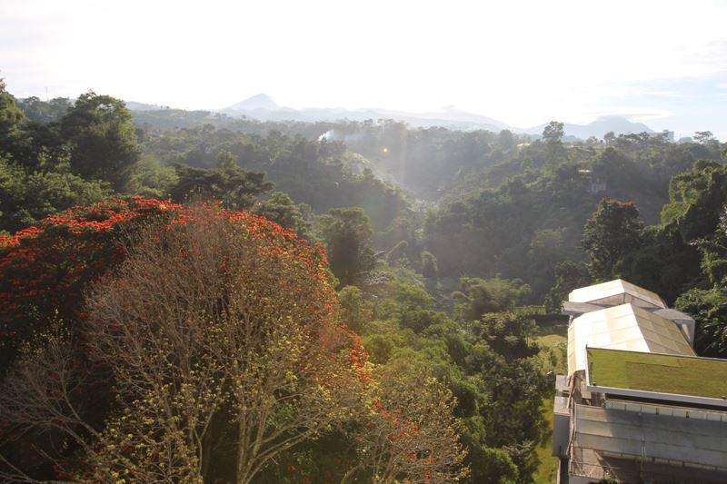 HOTEL PADMA BANDUNG Hotel Dengan Pemandangan Alam Tercantik Di Bandung