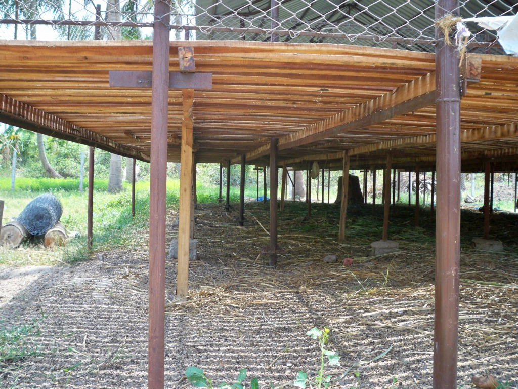 Free Pergola Plans Attached To House Shed Design For Goat