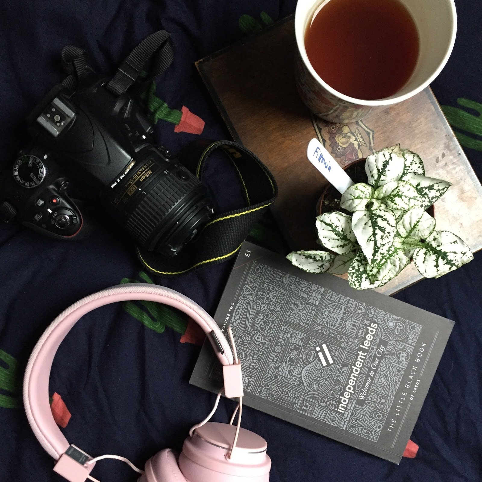 flatlay of plant, headphones, camera, book and a cup of tea