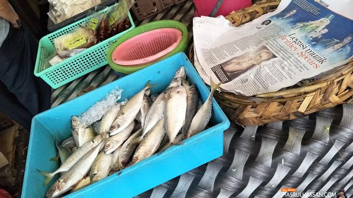 Ikan Segar Tiada Bekalan