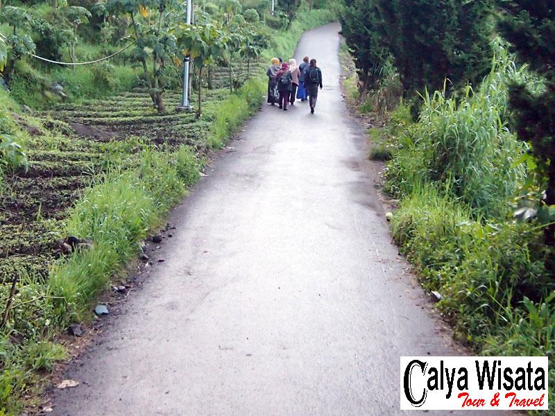 Foto akses jalan ke basecamp Sikunir