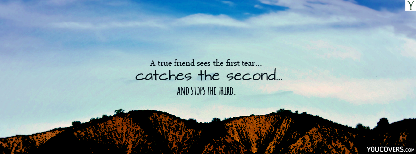 Best Fb Covers Quotes About Friendship For Timeline Cute Facebook Cover Photo