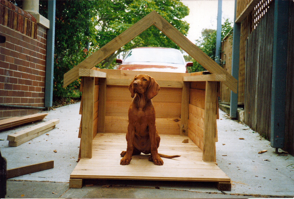 Dog Houses For Big Dogs To Build