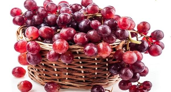 Anggur Merah Penangkal Penyakit Kanker