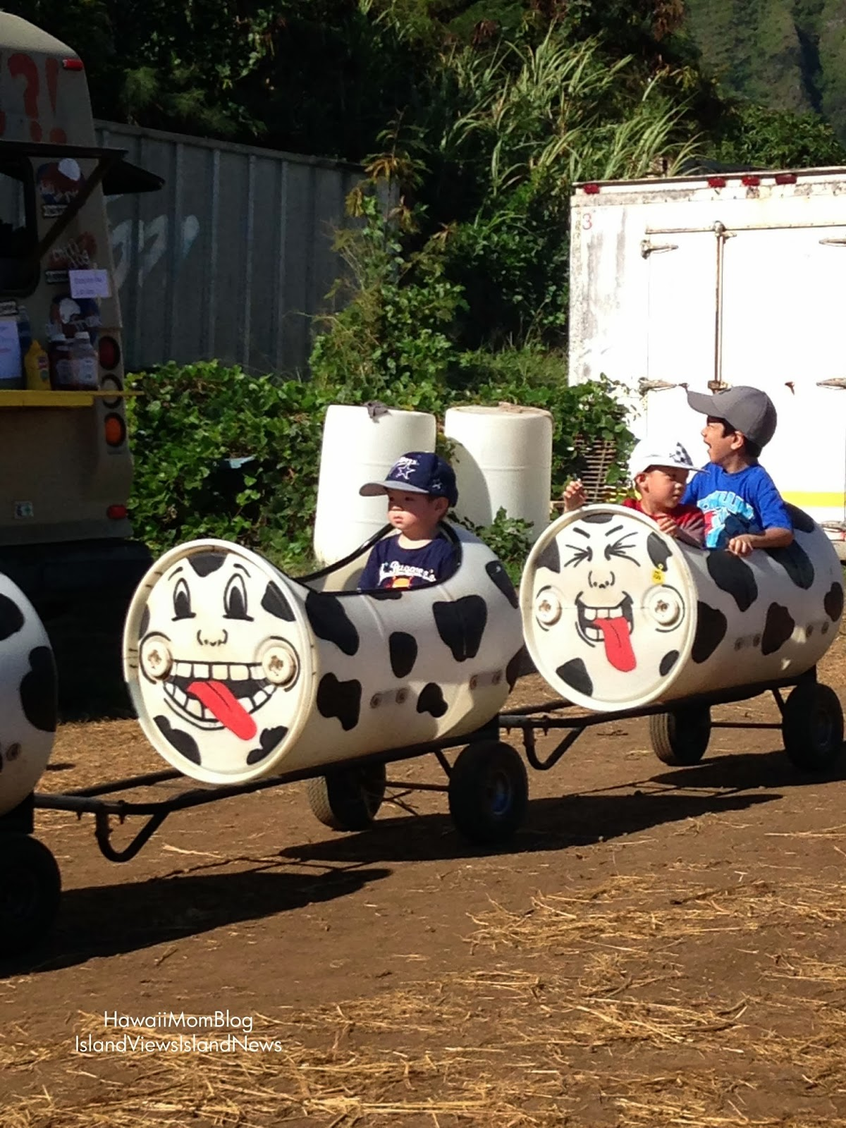 Waimanalo Country Farms Food Truck