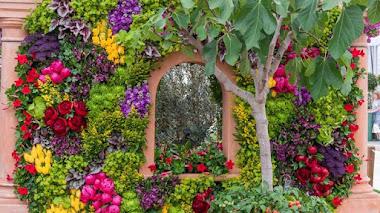 Las plantas en Chelsea Flower Show 2017