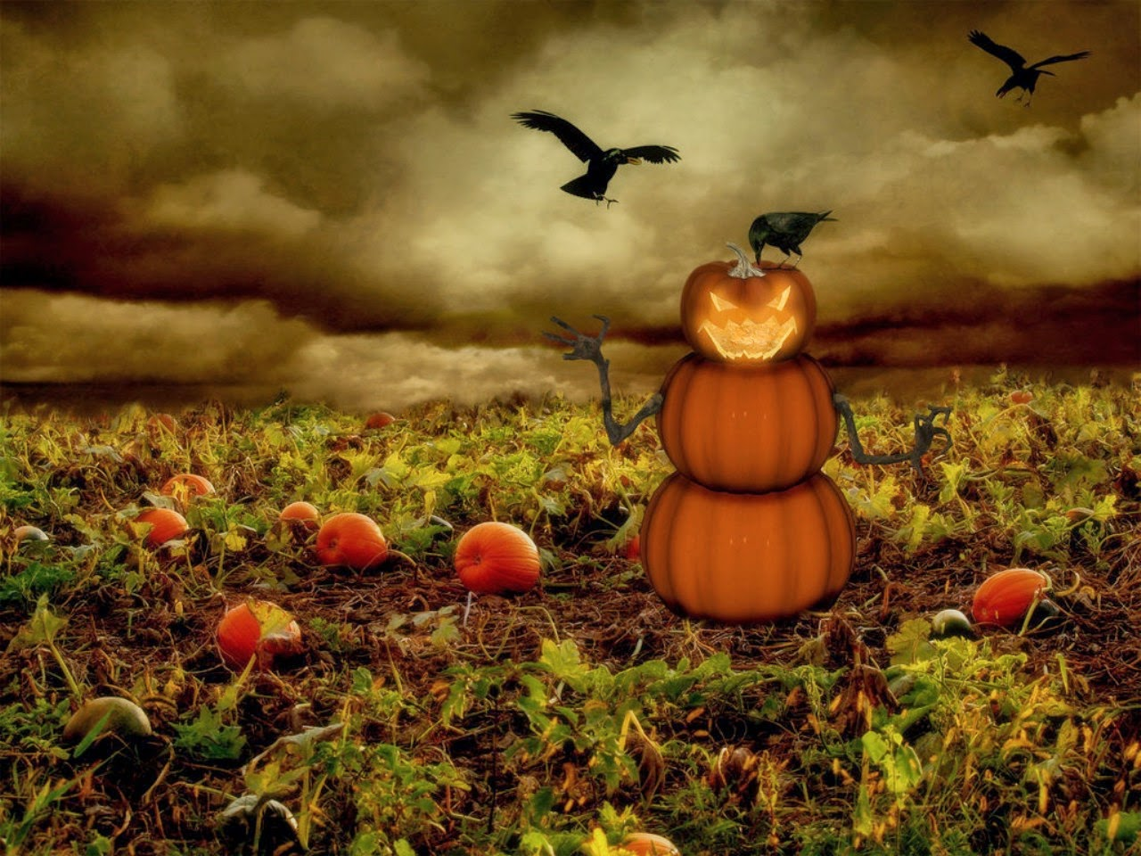 pumpkin-decoration-with-crow-for-halloween-HD-photography.jpg