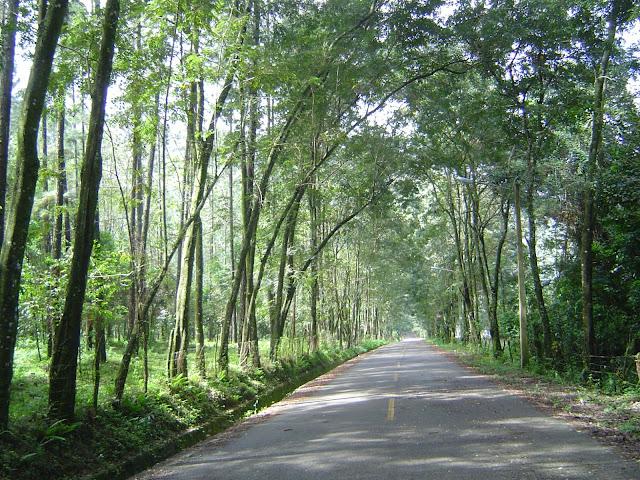 Por Jarabacoa, Provincia La Vega