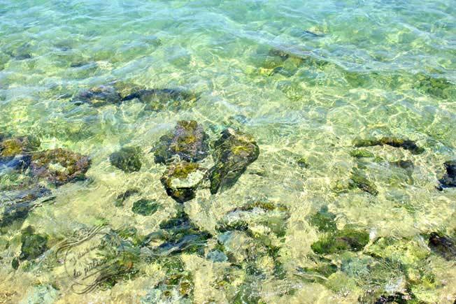 mer paros