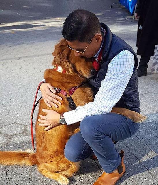 Cô chó đáng yêu mắc bệnh gặp ai cũng ôm chặt không rời