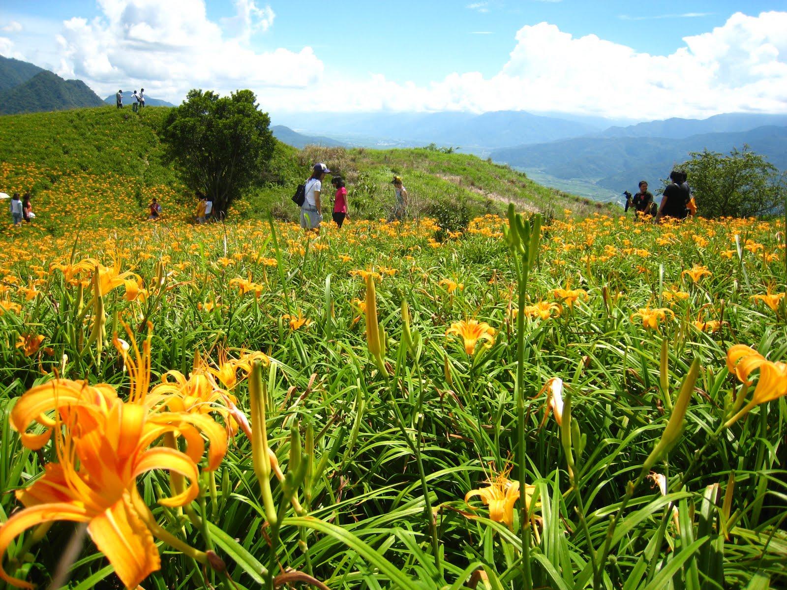 Angis' Lifestyle: 遊花蓮─六十石山