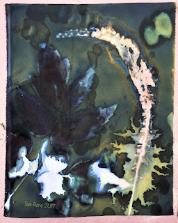 Wet Cyanotype_Sue Reno_Image 78
