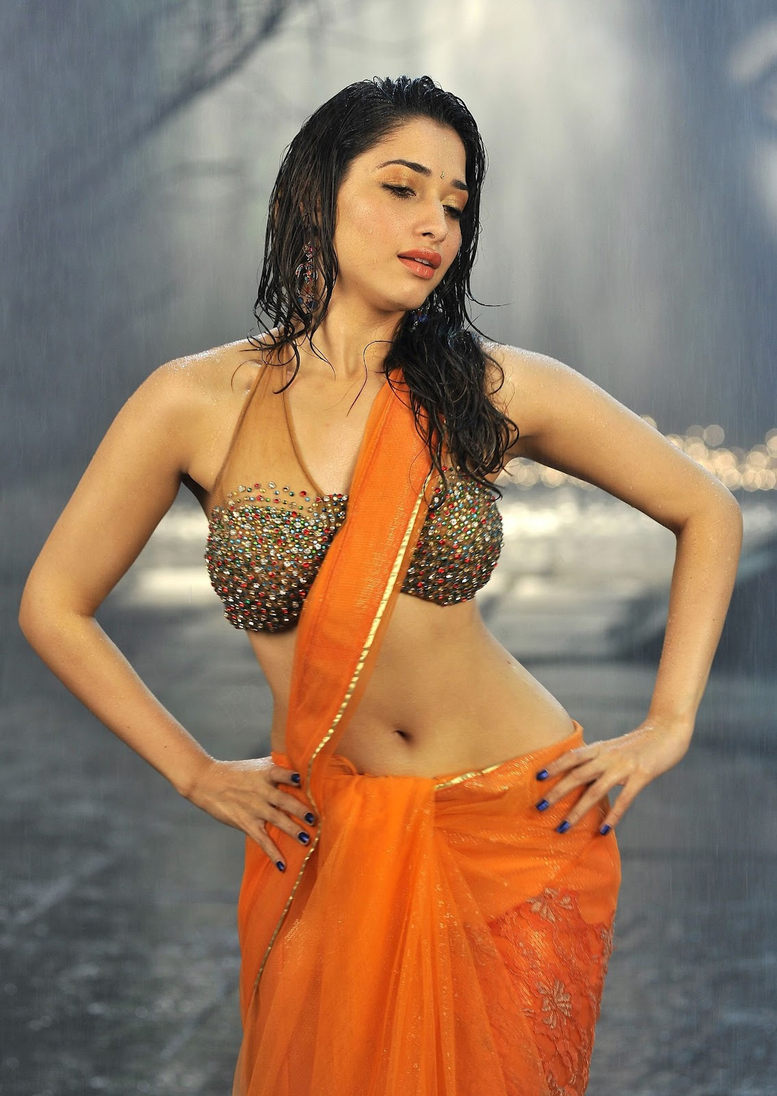 Tamanna Bhatia Beauty Secrets Body Fitness Tips: INDIAN ACTRESS: Tamanna Bhatia Hot Backless Saree In