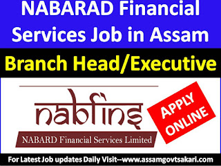NABARD Financial Services Recruitment 2019-Customer Service Executive/ Branch Head