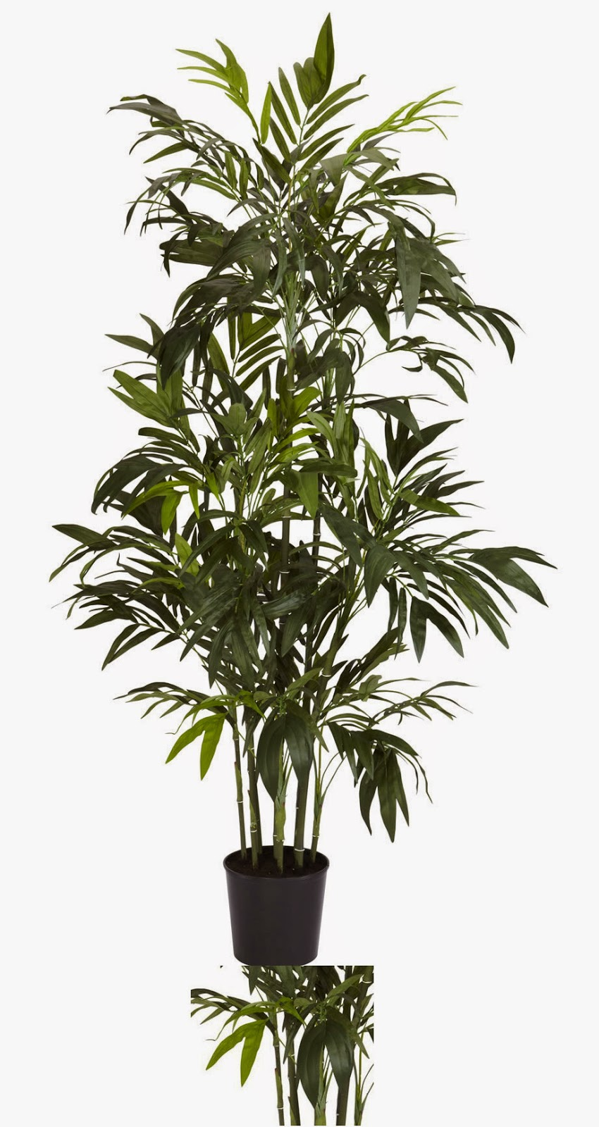 quality silk plants blog artificial bamboo trees the most realistic of them all. Black Bedroom Furniture Sets. Home Design Ideas