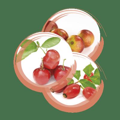 Integratore Vitamina C Armores Natura