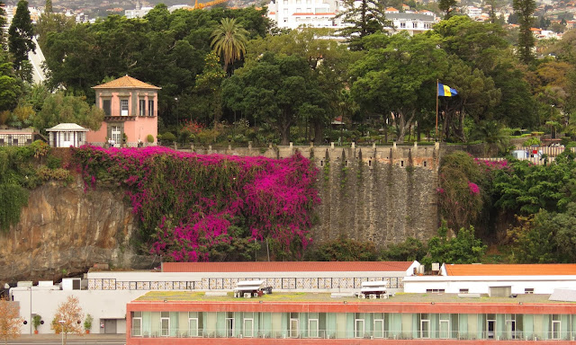 Quinta Vigia with a wall full of flowers