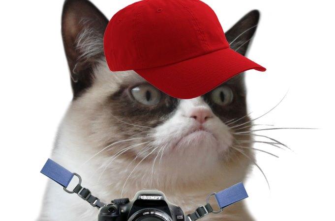 Grupmy Cat Tourist