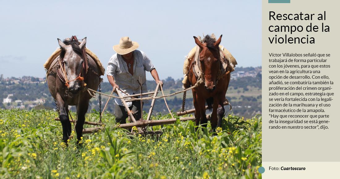 La Sagarpa de AMLO va por darle más apoyo a campesinos pobres y quitárselos a bandas criminales