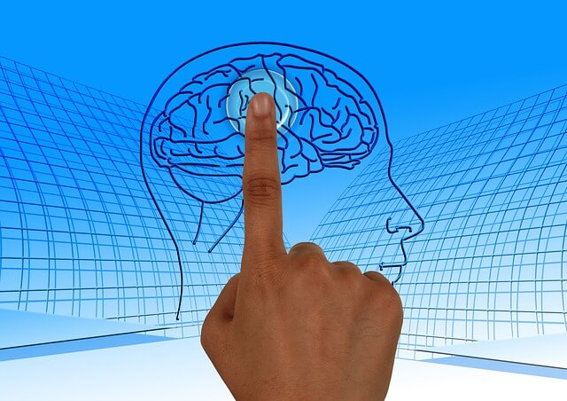 علم النفس العصبي النمائي