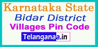 Bidar District Pin Codes in Karnataka State