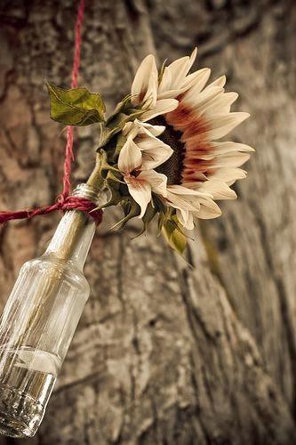 Kerajinan Tangan Dari Botol Bekas, Aneka Kreasi Botol Bekas 15