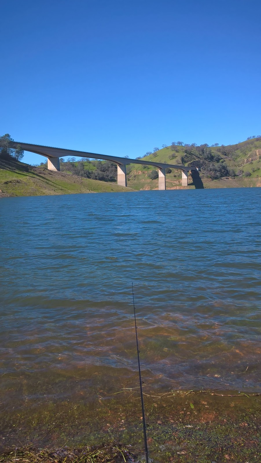Northern california trout fishing was so exciting i for Mokelumne river fishing