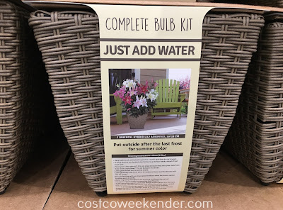 Costco 537582 - Growing flowers can't be easier with the Complete Bulb Kit Container