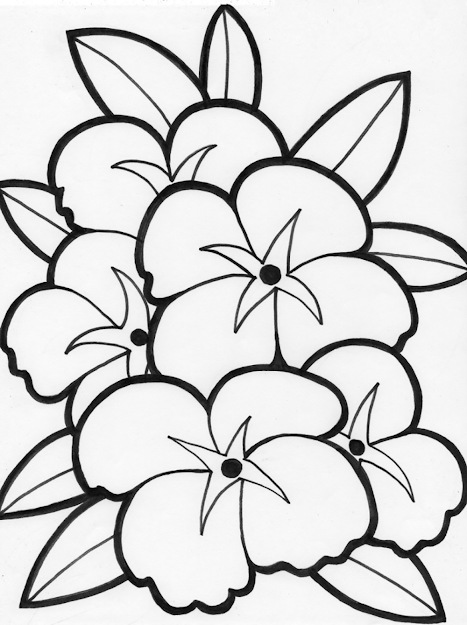 Beautiful Flower Coloring Pages For Kids  Printable Flowers Coloring Pages  For Kids