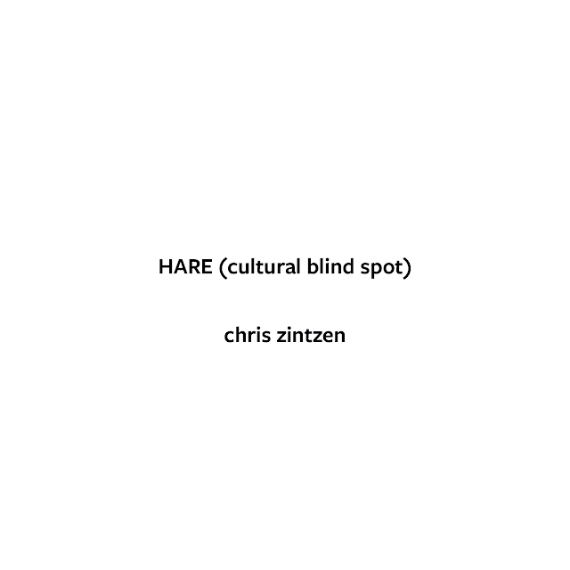 HARE (cultural blind spot) © Chris Zintzen | panAm productions