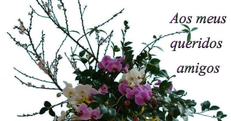 Boa Noite De Flores: Http://zetinha-importanciasdemim.blogspot.com/: BOA NOITE