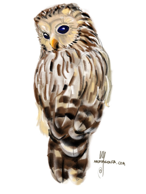 Ural owl bird painting by Ulf Artmagenta