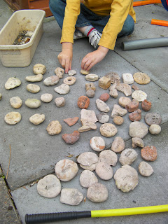 sorting collection of serialised rocks from southsea beach