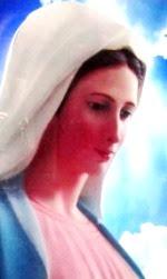 Rostro de perfil de la Virgen María