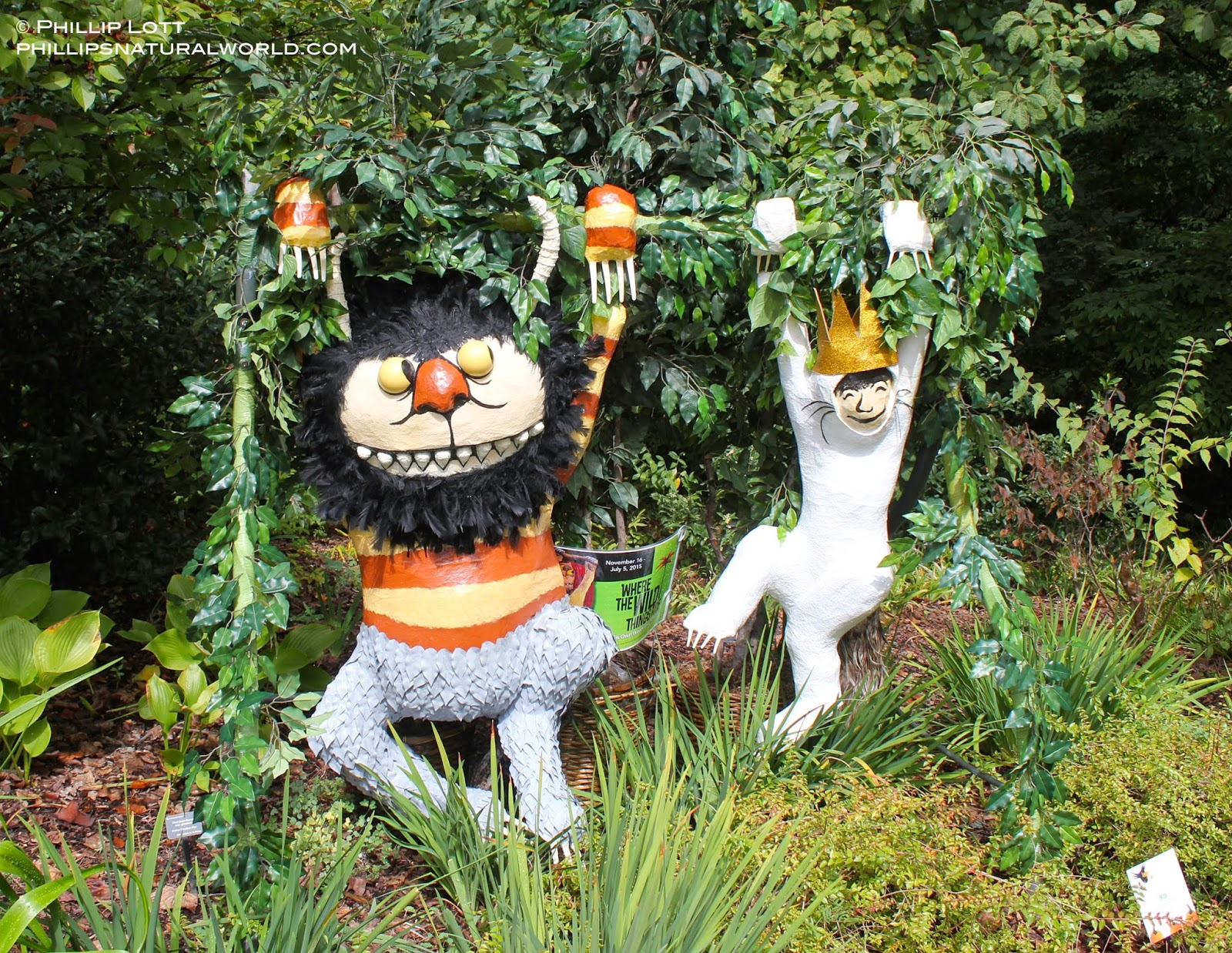 Halloween Scarecrows and Pumpkin Heads | Phillip\'s Natural World