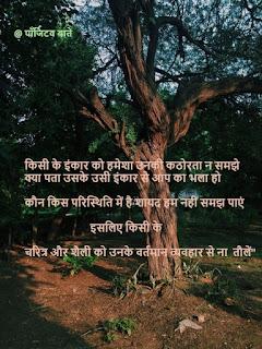 Ped Chidiya Aur Barish