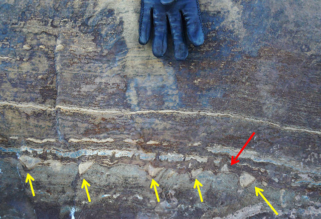 Evidence of earliest life on Earth disputed
