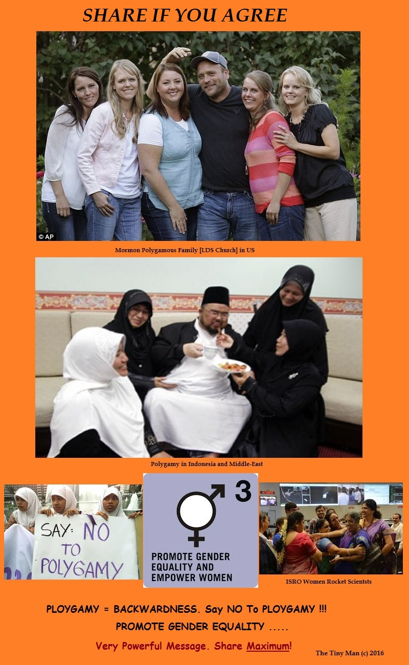 Promote Gender Equality Ban Polygamy
