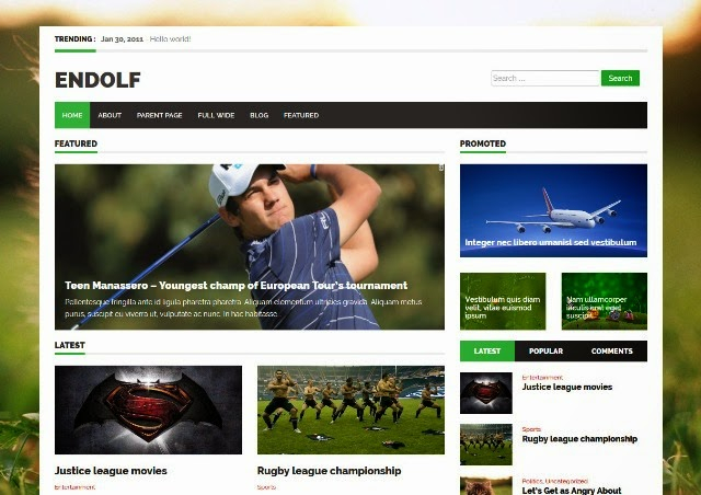 Endolf - Responsive WordPress Theme