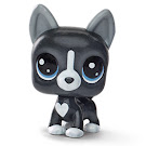 Littlest Pet Shop Boston Terrier Generation 6 Pets Pets