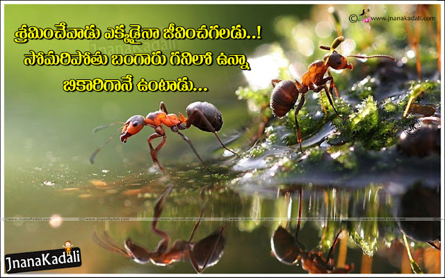 True Life Value Quotes in Telugu, Telugu Good Reads, best Telugu life success Quotes