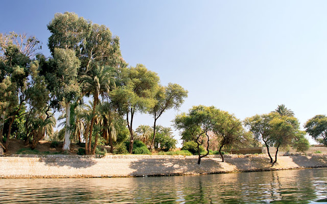 Luxor Crocodile Island