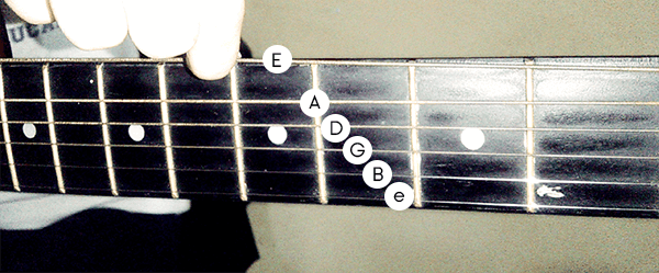 Beginner\'s Guide: How To Drop D