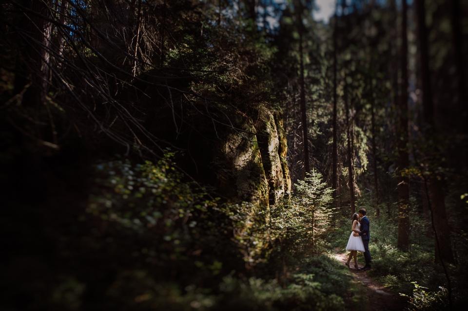 sesja poślubna w lesie zielonakropka