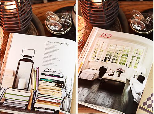 Amalie loves Denmark Buchvorstellung Nordisches Wohndesign