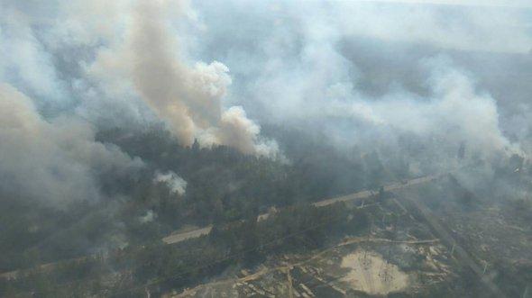 У повітрі - бензопірен - еколог про пожежу в Чорнобилі