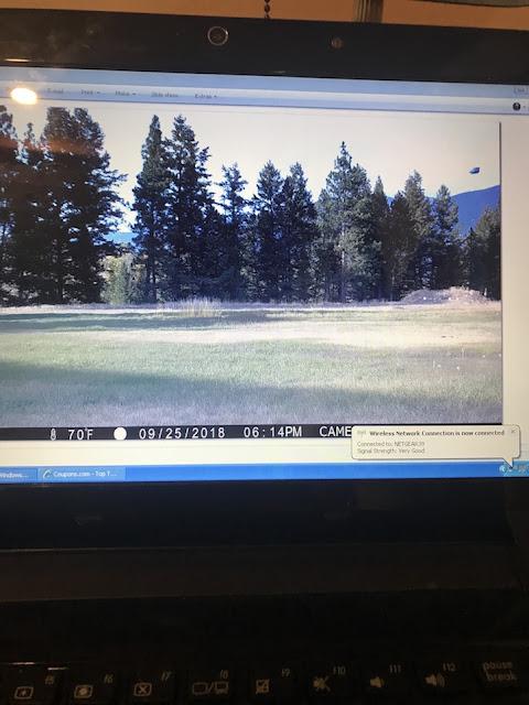 UFO Caught On Wildlife Game Camera On Eureka, Montana Ovni%252C%2Bomni%252C%2Bnobel%252C%2B%25E7%259B%25AE%25E6%2592%2583%25E3%2580%2581%25E3%2582%25A8%25E3%2582%25A4%25E3%2583%25AA%25E3%2582%25A2%25E3%2583%25B3%252C%2B%2BUFO%252C%2BUFOs%252C%2Bsighting%252C%2Bsightings%252C%2Balien%252C%2Baliens%252C%2BET%252C%2Banomaly%252C%2Banomalies%252C%2Bancient%252C%2Barchaeology%252C%2Bastrobiology%252C%2Bpaleontology%252C%2Bwaarneming%252C%2Bvreemdelinge%252C%2Bstrange%252C%2Bhackers%252C%2Barea%2B51%252C%2B4
